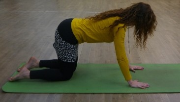inhaling, lengthening the spine, especially lower back, dont dip